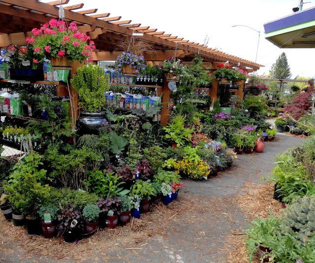 Judy S Enchanted Garden Spokane Wa A Favorite Of Mine
