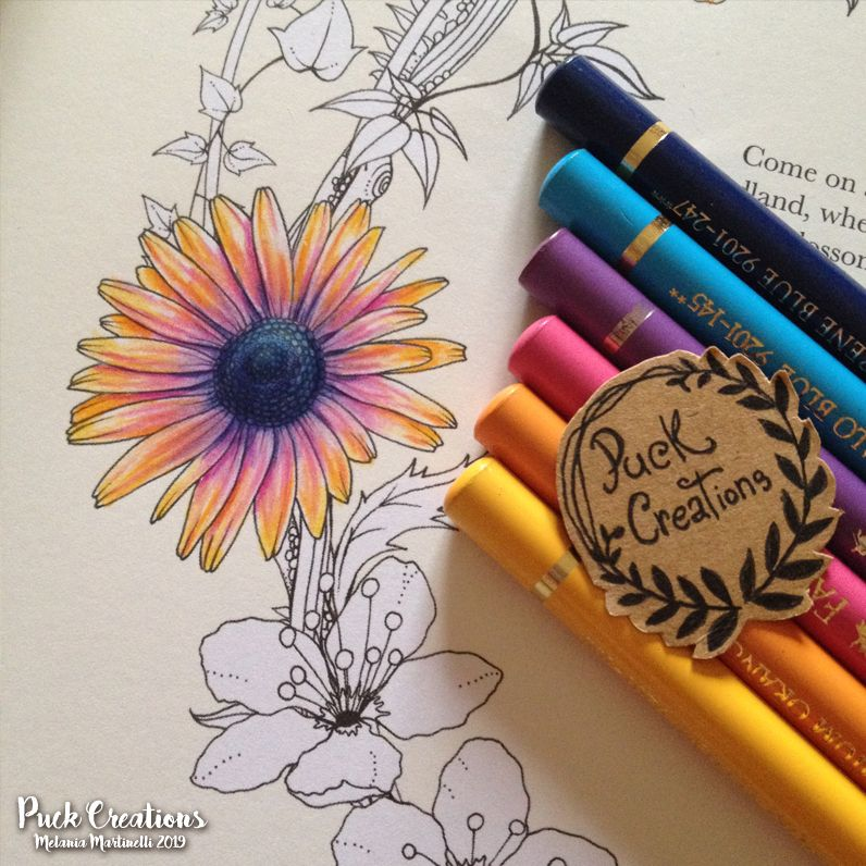 From Into The Wild Coloring Book By Daisy Fletcher Daisyfletcher Intothewild Coloring Book Art Coloring Books Color Pencil Art