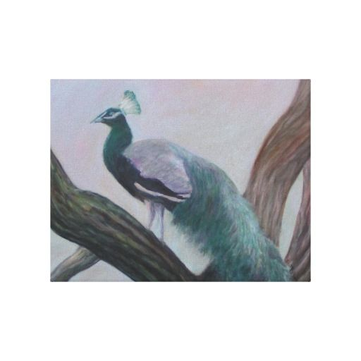PEACOCK IN AN OAK TREE STRETCHED CANVAS PRINT