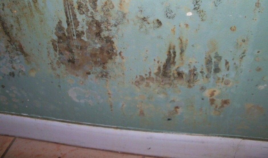 Mold Damage In a bedroom wall Water damage, Molding