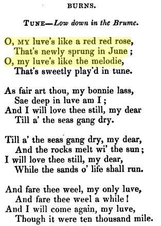Robert Burns O My Luves Like A Red Red Rose Scottish
