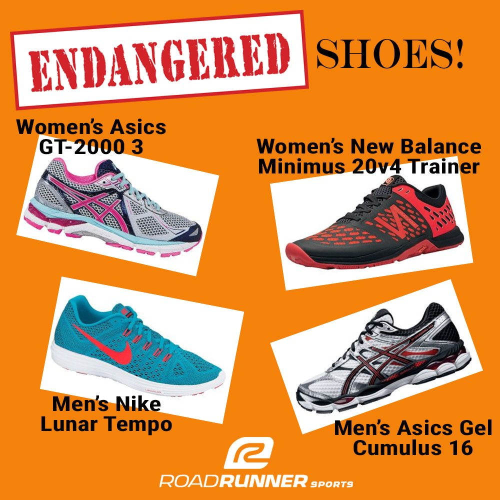 8b3ed4536 Endangered shoes! Get them now while they last. Some styles under  100!