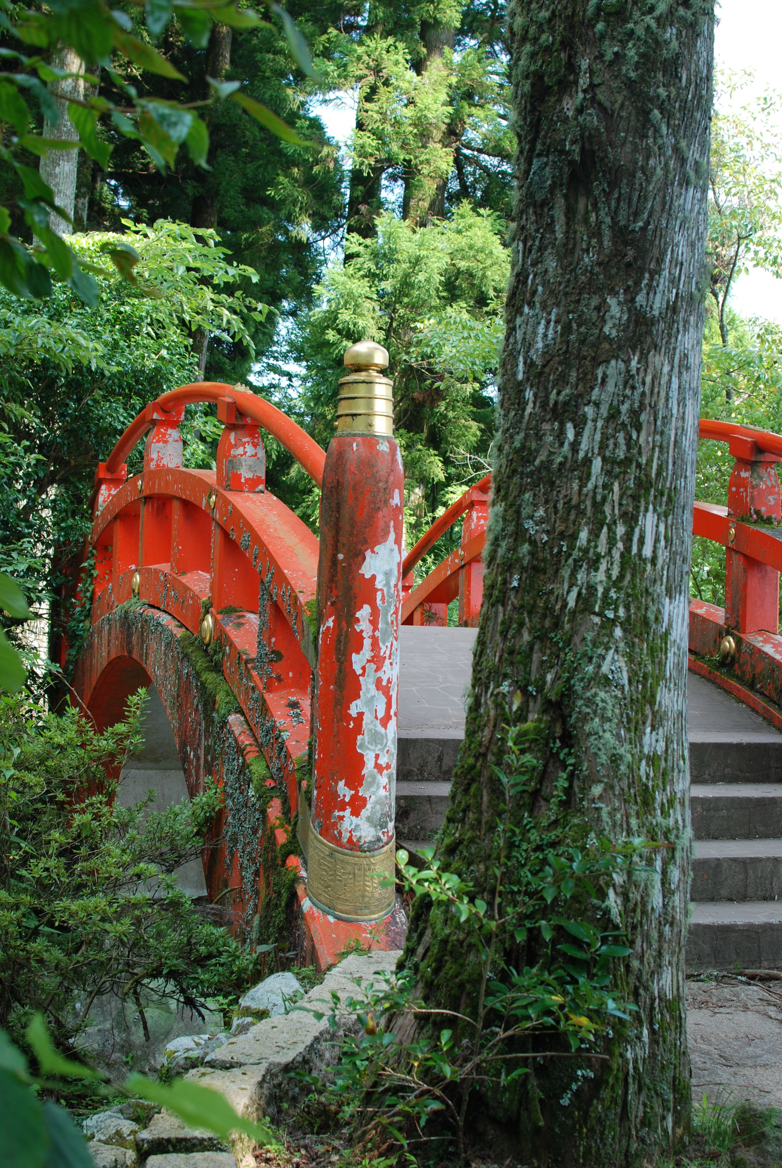 Bridge next to the Torii Gate at the Lake Ashinoko, Hakone