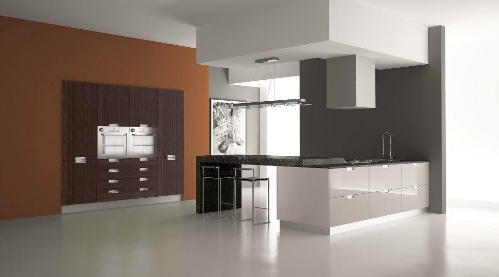 Denver Kitchen Design The Kitchen Showcase Modern Euro
