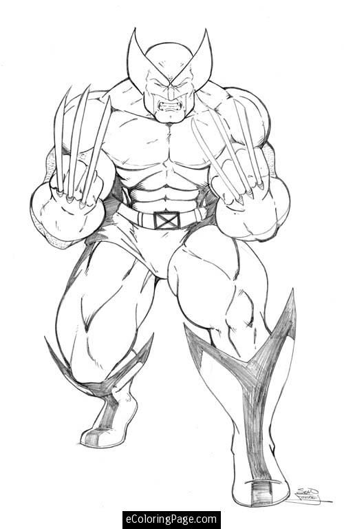 Marvel Superhero Wolverine Coloring Page Colouring Pages
