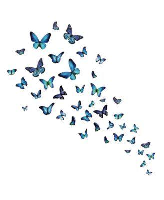 Mariposa Butterfly Wall Art Kit Butterfly wallpaper