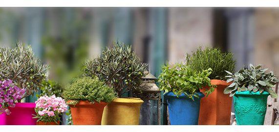inspiration f r balkon und terrasse dekorative pflanzent pfe findet ihr bei obi oder auf der. Black Bedroom Furniture Sets. Home Design Ideas