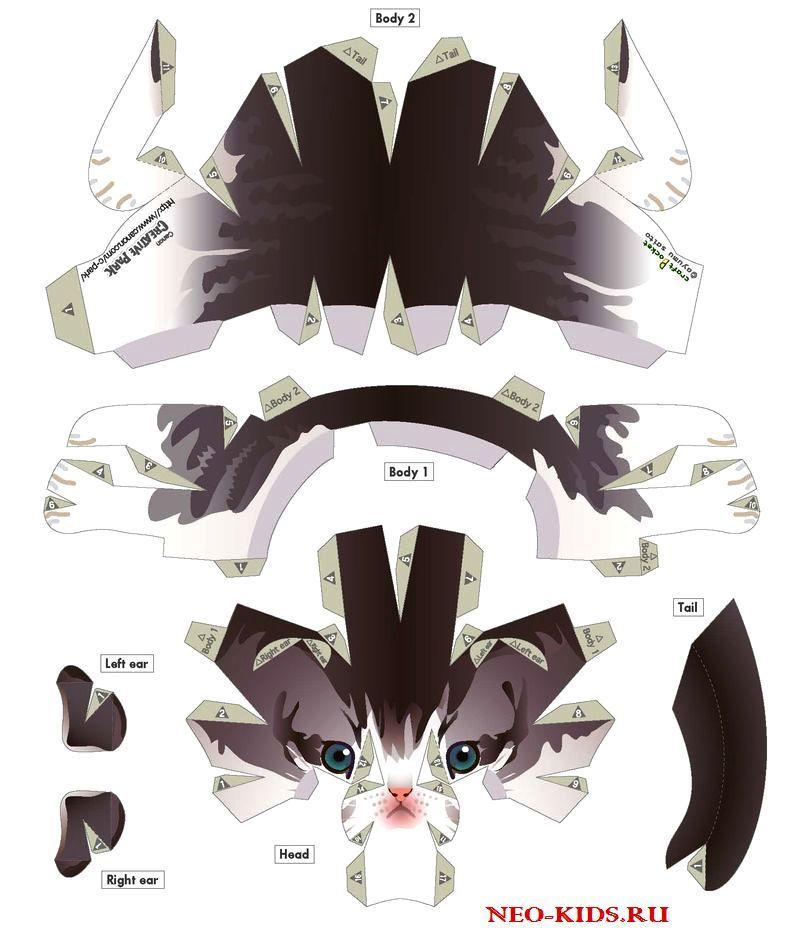 Камень ножницы бумага анимация в варфрейм отличительные черты