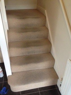 How To Clean Carpet On Stairs In 5 Simple Steps