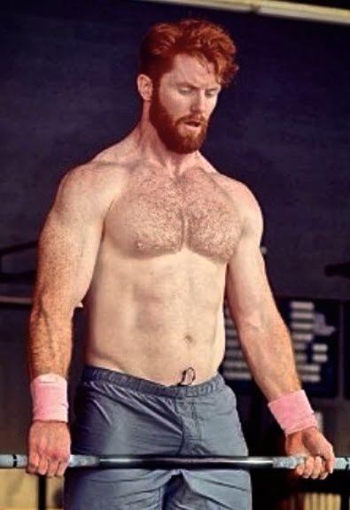 ginger redhead bear gay Hairy