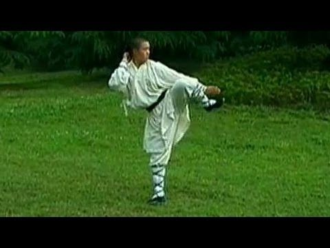 Shaolin big luohan kung fu, simplified | Martial Arts | Kung