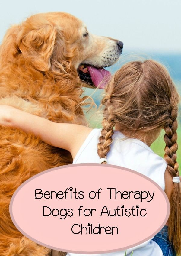 The Incredible Benefits Of Therapy Dogs For Autistic Children