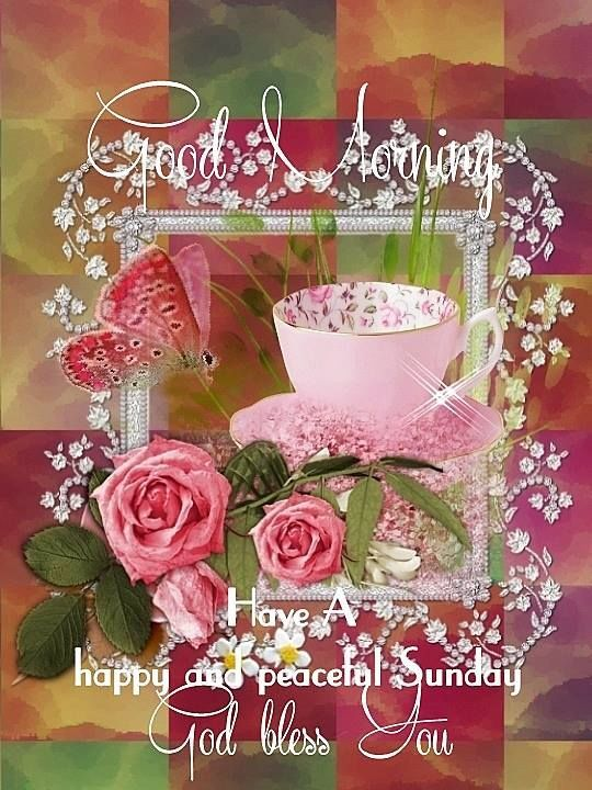 Good Morning Have A Happy And Peaceful Sunday God Bless You