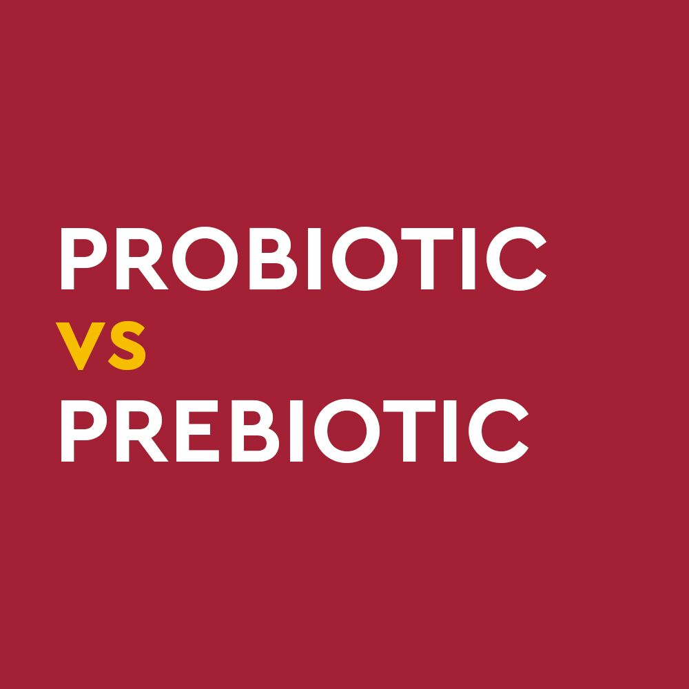 Probiotics Are Live Microorganisms Known To Benefit Our Microbiome