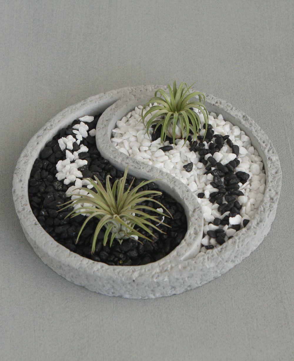 Plantes Pour Jardin Contemporain relaxing yin yang inspired zen terrarium comes with colorful