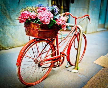 With a bike like this it's always Spring time!