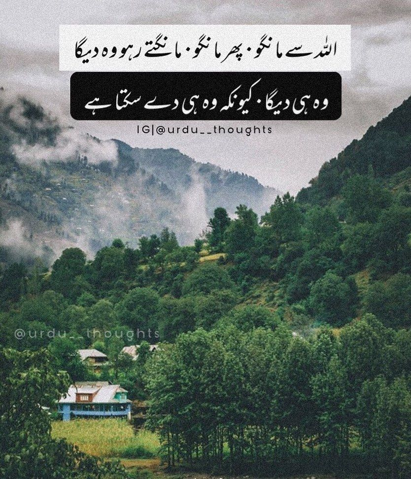 Pin On Urdu Thoughts