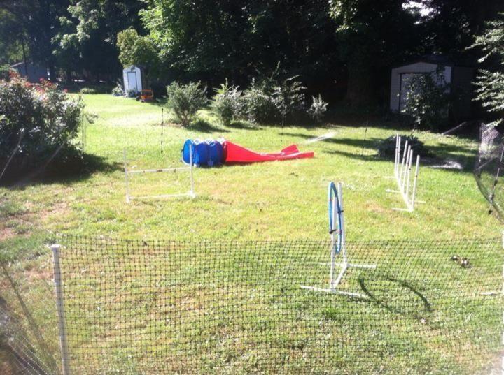 DIY Dog Stuff Respect My Agility! Temporary Fencing Mini Agility