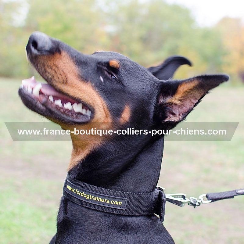 france boutique collier pour chien