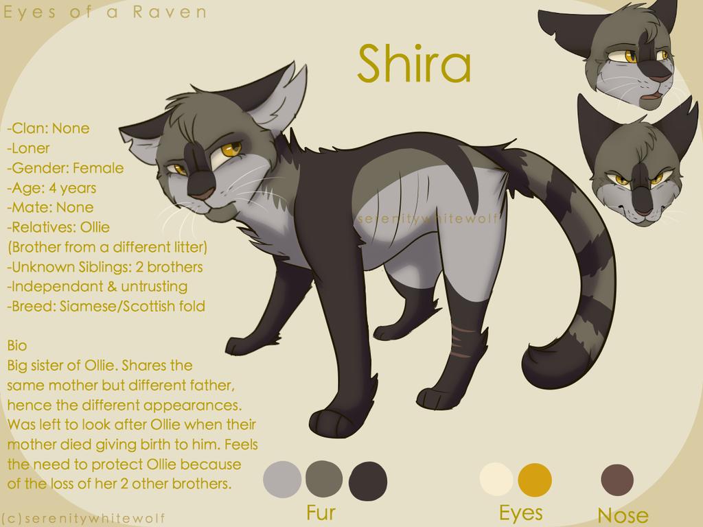 Shira Reference Sheet By Serenitywhitewolf Deviantart Com On Deviantart Warrior Cats Fan Art Warrior Cat Oc Warrior Cat Drawings