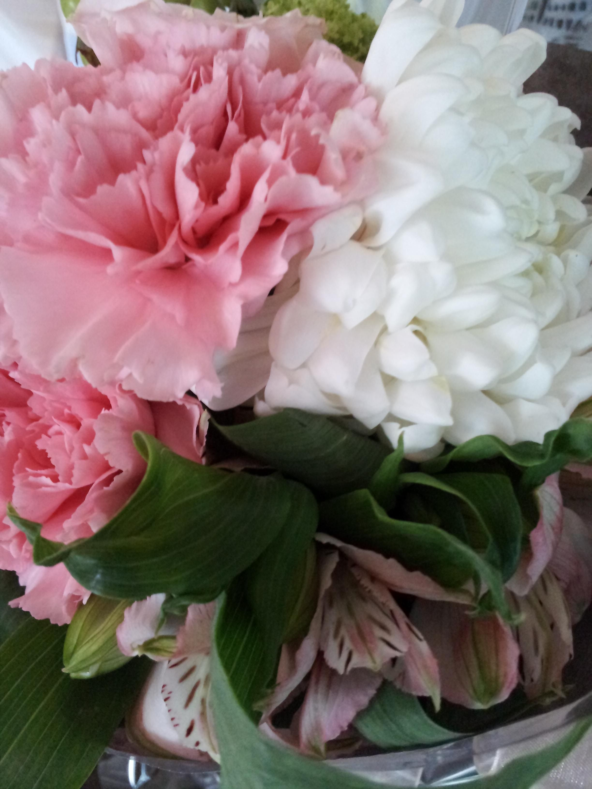 #Pink #flowers