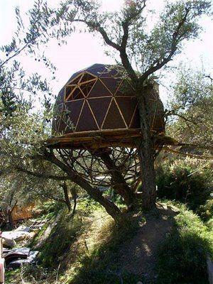 Geodesic dome tree-houses casa arbol Pinterest Casas, El - casas en arboles