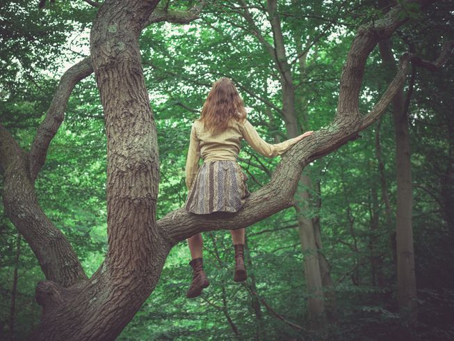 You Re Never Too Old To Climb A Tree Tree Photography Old Trees