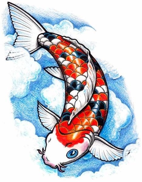 Koi Fish Drawing Color Blue Images
