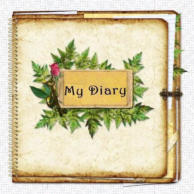 My Diary 5 Covers Template