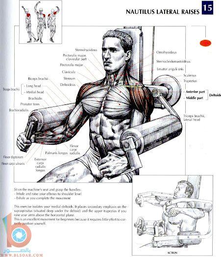 صور لتقوية عضلات الظهر والكتفين