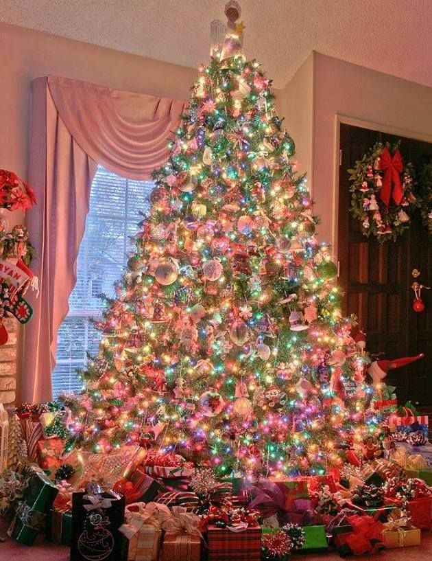 4th Christmas with just me This year putting tree up! Tree