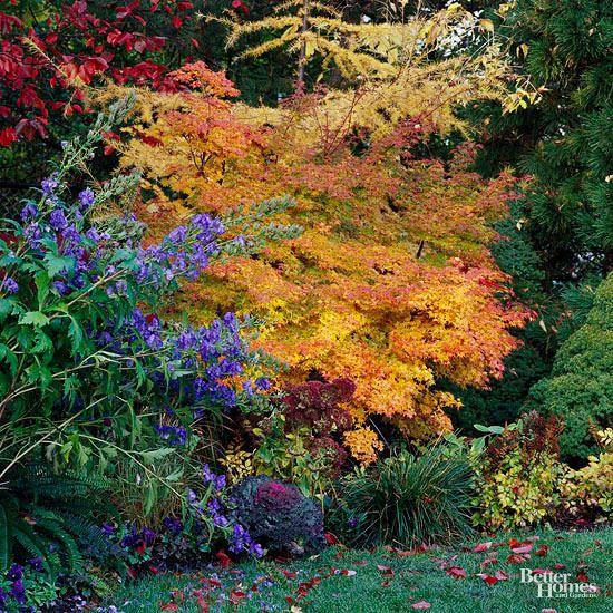 Pin On Garden & Patio