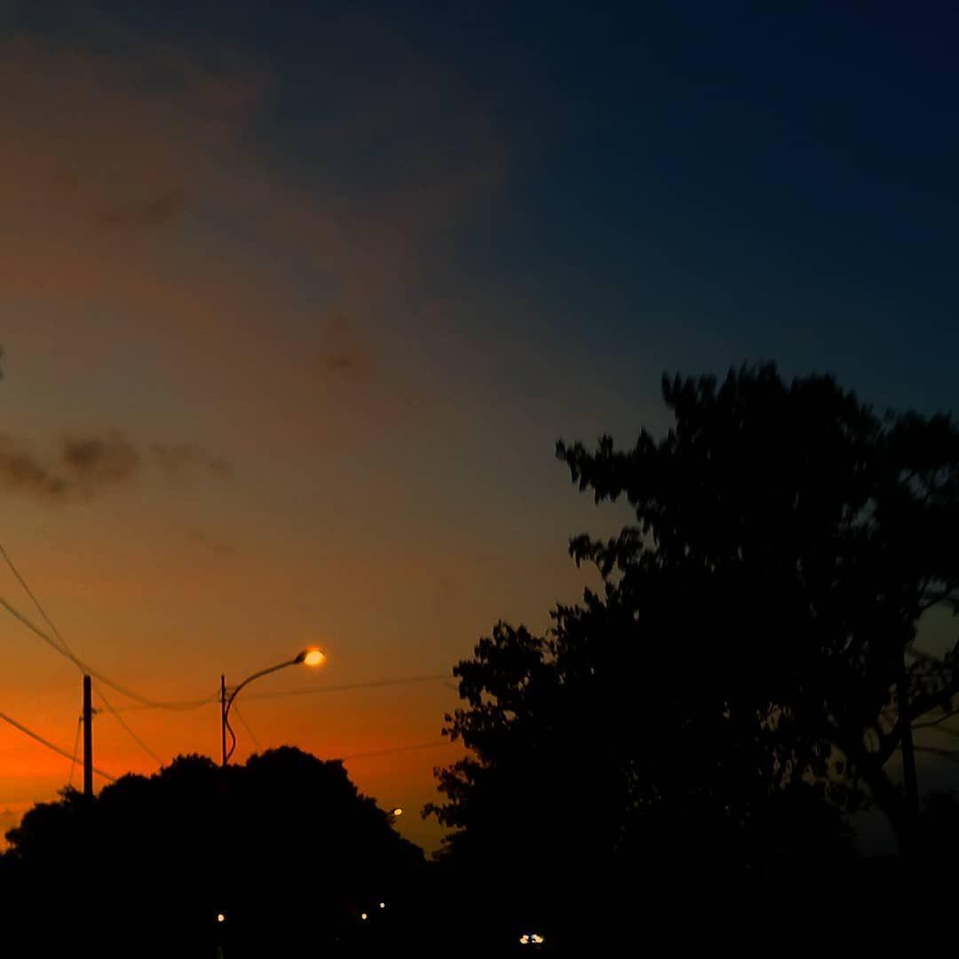 chacha di instagram 🌆 sunset tree beautifuldestinations