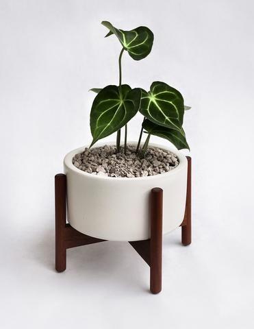 case study desk top planter
