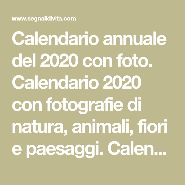 Calendario Fotografico 2020.Calendario Annuale Del 2020 Con Foto Calendario 2020 Con