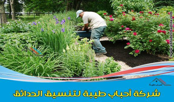 شركة تنسيق حدائق بالدمام بأفضل منسق حدائق بالظهران والدمام Herbs Dammam Food