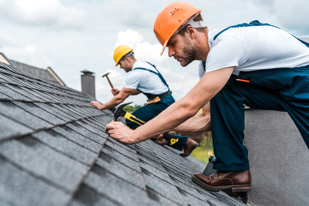 Roofing, Roof Repair, Roof Replacement in Fort Myers, FL in 2020 | Roof repair, Roofing, Roof shingles