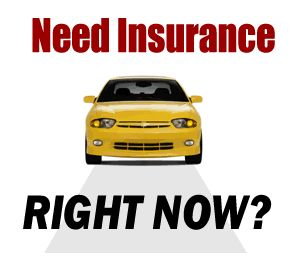 Need Auto Insurance Right Now Call Or Visit Us Online 305 310
