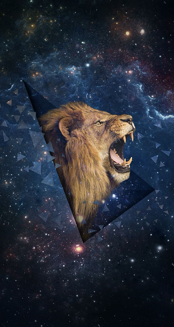 Lion Galaxy Wallpaper Lion Wallpaper Iphone Space Background Iphone Android Wallpaper Art
