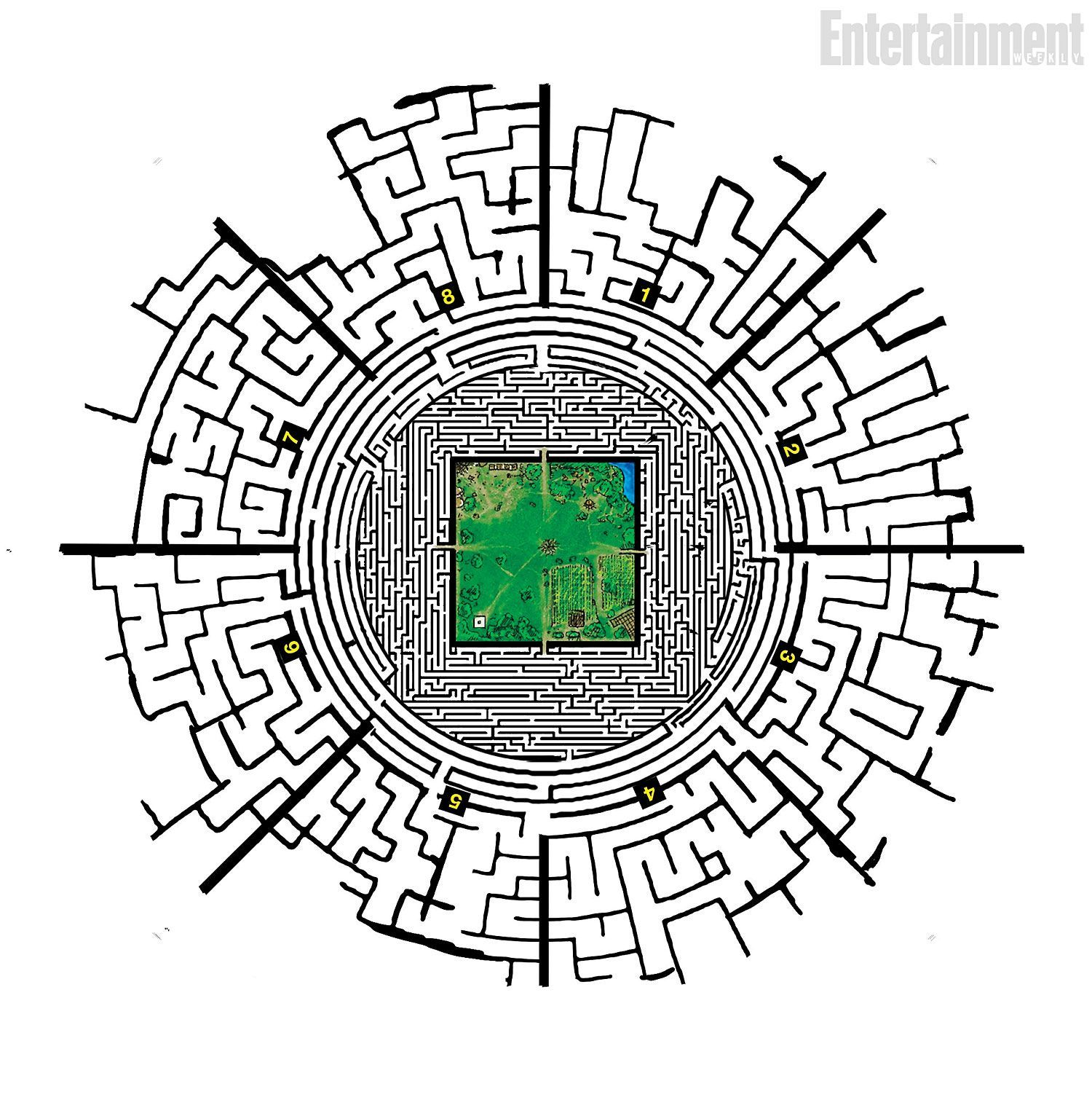 Maze Runner Maze Map Exclusive: How Wes Ball designed the perfect maze for 'The Maze