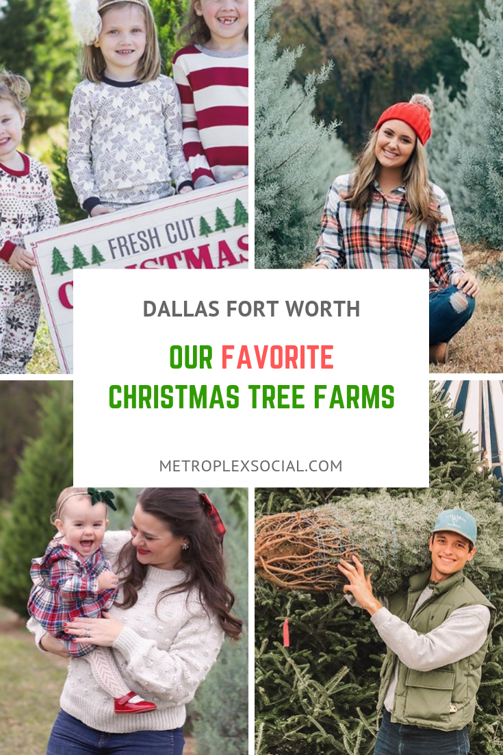 These Christmas Tree Farms Near Dfw Are Where To Take Your Family Christmas Tree Farm Tree Farms Cool Christmas Trees