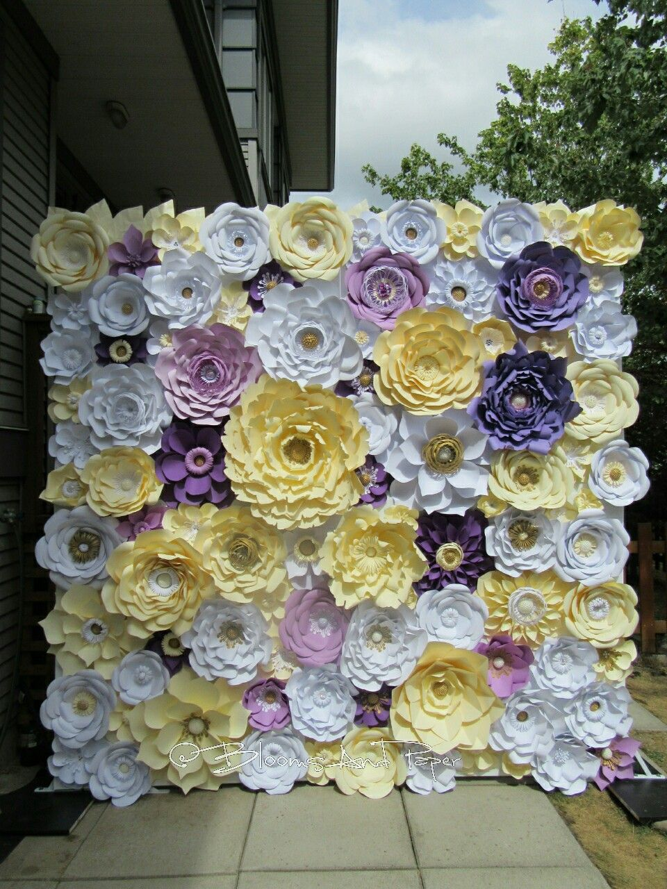 Our newest paper flower wall creation templates and individual our newest paper flower wall creation templates and individual flowers are available for sale mightylinksfo