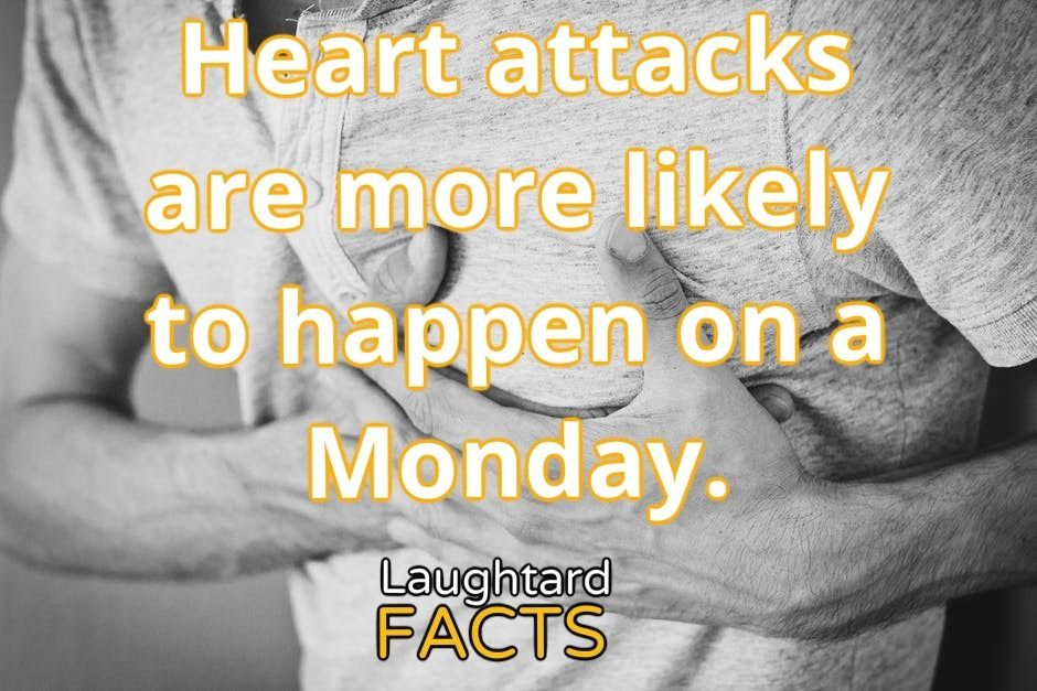 Fact About Heart Attacks Joy Quotes Facts Heart Attack
