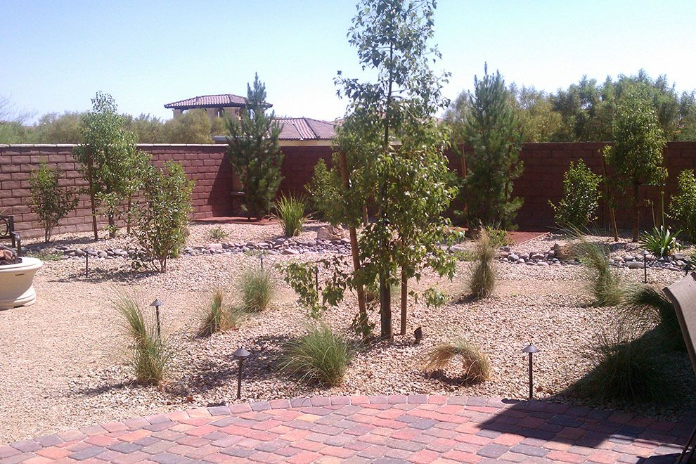 Simple Desert Landscape Ideas On The Large Backyard Planted With