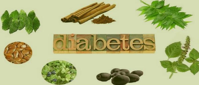 أفضل 6 اعشاب تنزل السكر بسرعه Plants Asparagus Vegetables