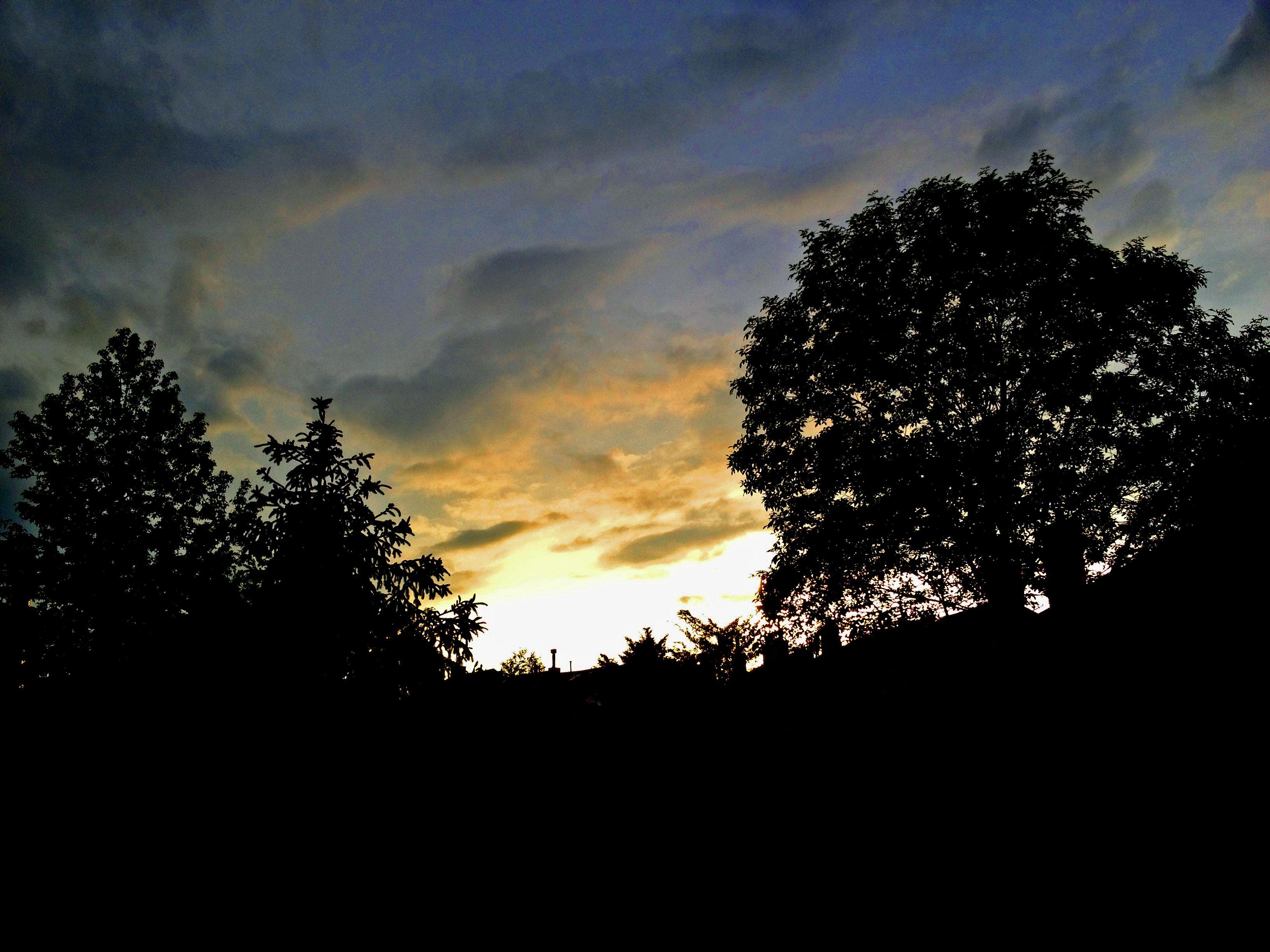 Twilight from My Backyard