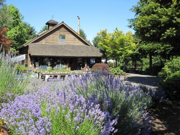 Lavender Days - Oregon Lavender Association | Oregon ...
