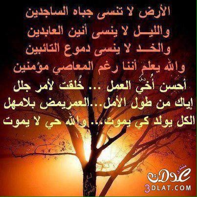 Photos And Videos By سحاب Sfhtfhutyh1 Photo And Video Photo Arabic Quotes