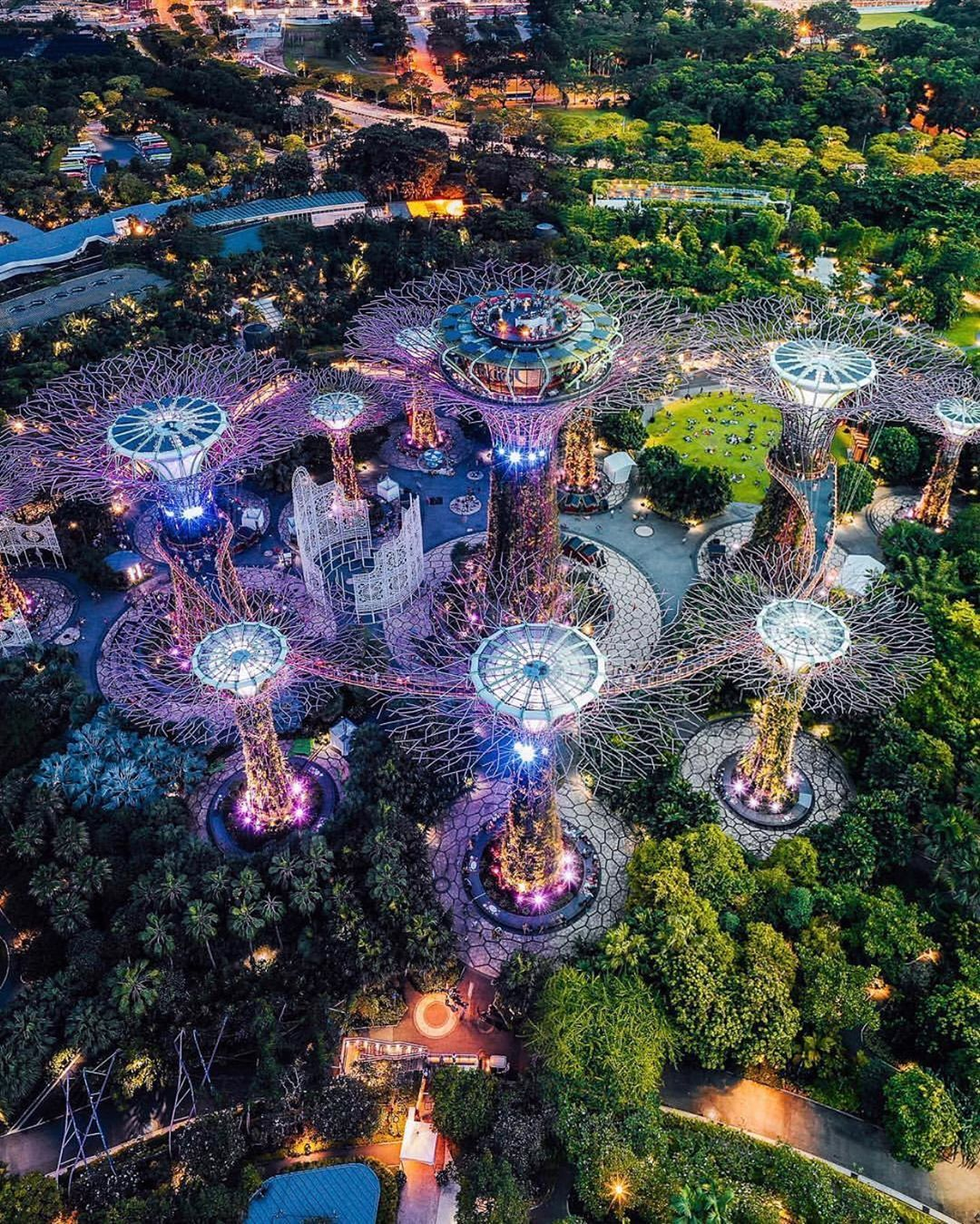 Beautiful top view of Singapore kevouthere { nature