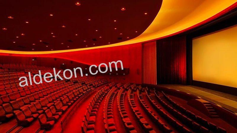 Konferans Koltugu Sinema Tiyatro Koltuklari Auditorium Seating